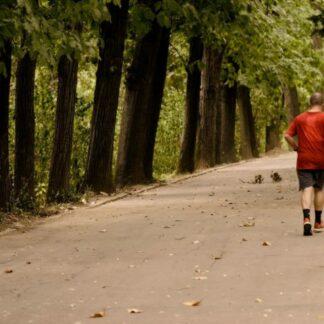 Exercício Físico: Como Criar o Hábito de Praticar Diariamente?